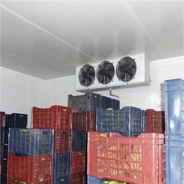 """Cold Room Indoor 12""""X3 fan"""