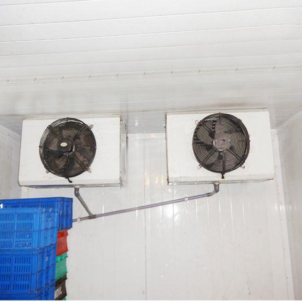 """Cold Room Indoor 14""""X1 fan"""