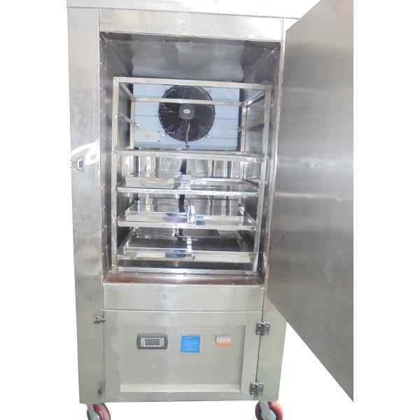 Portable Blast Freezer 6X5X8