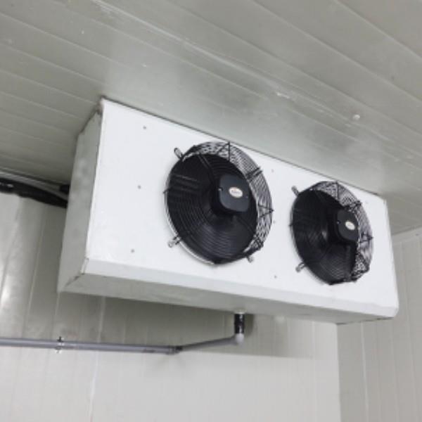 """Cold Room Indoor 12""""X2 Fan"""