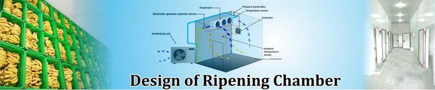 Design of Ripening Chamber