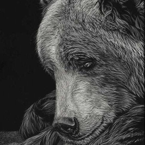 White on black seniors  animals portrait art n painting classes (12+no age bar)