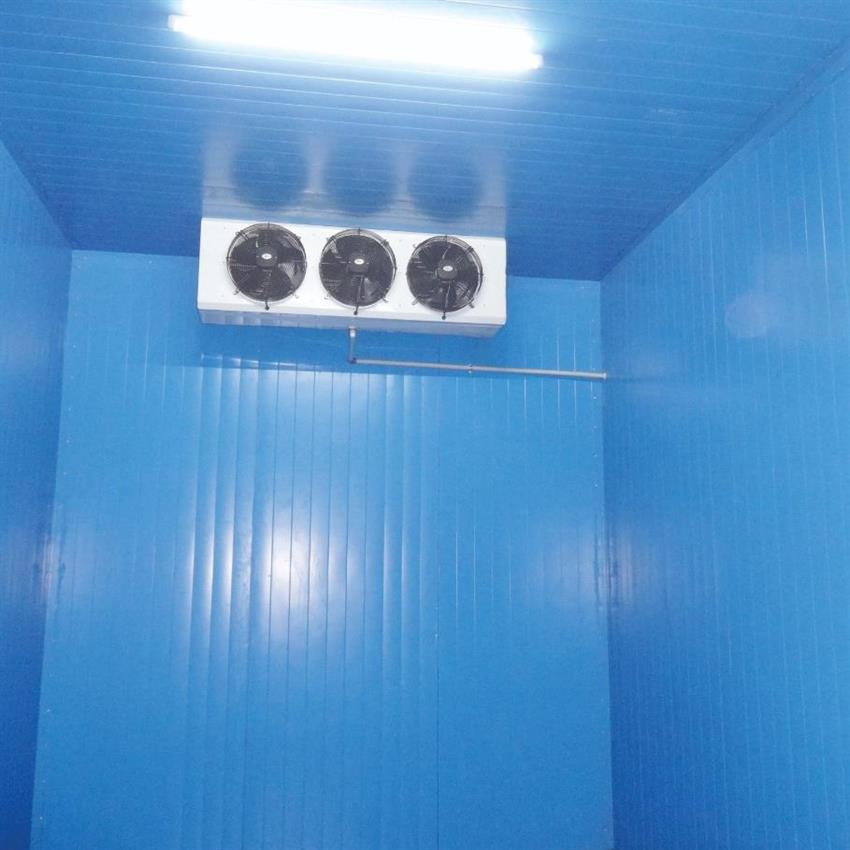 COLD ROOM PUF PANEL  10 x 10 x 10 ft