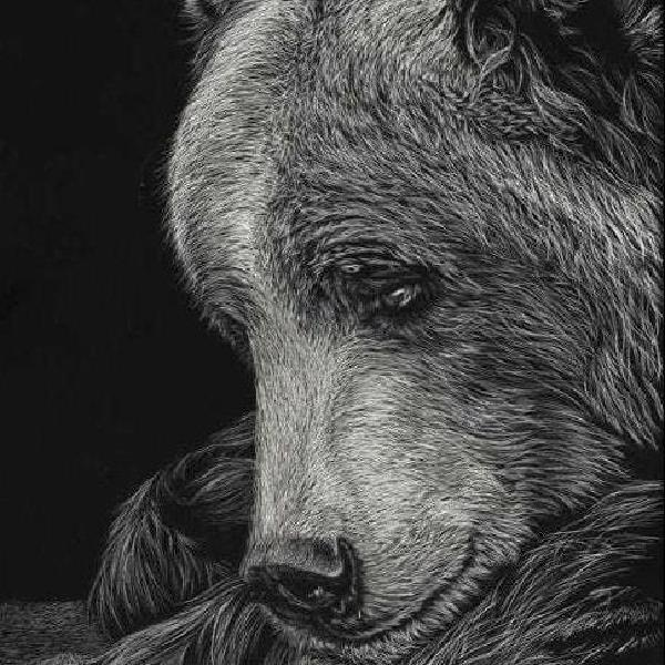 White on black seniors animals portrait art n painting Animal study classes