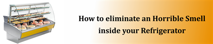 How to eliminate an Horrible Smell inside your Refrigerator