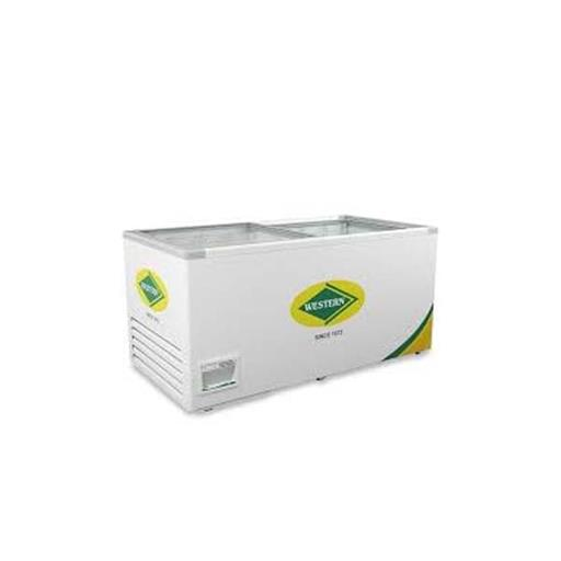 Western Glass Top Deep Freezer