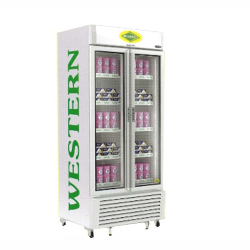 Vertical Freezer SRF900
